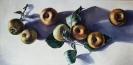 Äpfel_1